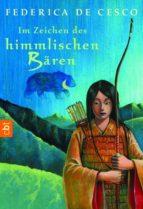 Im Zeichen des himmlischen Bären (ebook)