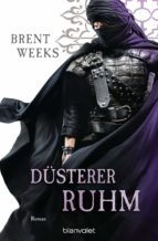 Düsterer Ruhm (ebook)