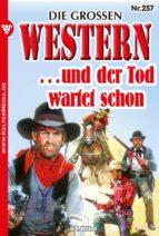 Die großen Western 257 (ebook)