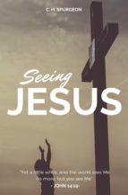 Seeing Jesus (ebook)