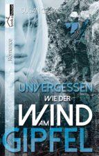 Unvergessen wie der Wind am Gipfel (ebook)