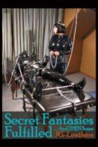 Secret Fantasies Fulfilled & Then Some (ebook)