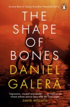 The Shape of Bones (ebook)