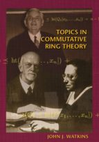 Topics in Commutative Ring Theory (ebook)