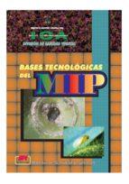 Bases tecnológicas del MIP (ebook)