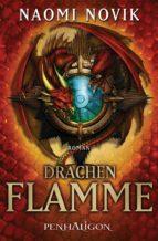 Drachenflamme (ebook)