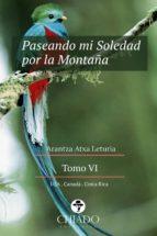 Paseando mi Soledad por la Montaña. Tomo VI (ebook)