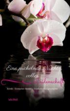 Eine prickelnde Nacht voller Leidenschaft Erotik / Erotischer Roman / Erotische Kurzgeschichte (ebook)