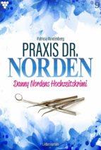 Praxis Dr. Norden 9 – Arztroman (ebook)
