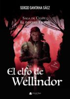 El elfo de Wellindor (eBook)