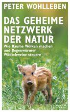 Das geheime Netzwerk der Natur (ebook)