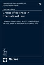 Crimes of Business in International Law (ebook)