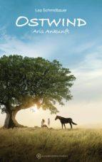 Ostwind - Aris Ankunft (ebook)