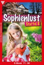Sophienlust Staffel 8 - Liebesroman (ebook)