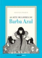 As Sete Mulheres de Barba Azul (ebook)