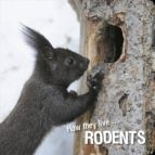 How they live... Rodents (ebook)