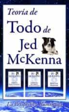 Teoría De Todo, De Jed Mckenna--La Perspectiva Iluminada