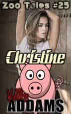 Christine (ebook)