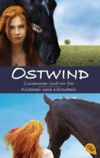 Ostwind: Zusammen sind wir frei / Rückkehr nach Kaltenbach (ebook)