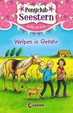 Ponyclub Seestern 4 - Welpen in Gefahr (ebook)