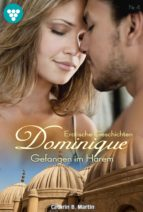 Dominique 4 - Erotik (ebook)