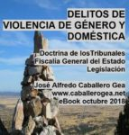 DELITOS DE VIOLENCIA DE GÉNERO Y DOMÉSTICA (ebook)