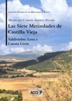 Las siete Merindades de Castilla Vieja - Tomo II (ebook)
