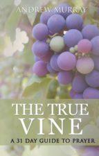 The True Vine: a 31 day guide to prayer (ebook)