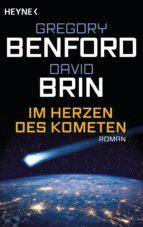 Im Herzen des Kometen (ebook)