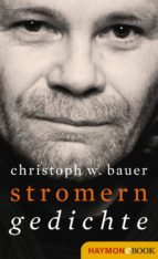 Stromern (ebook)