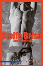Steife Brise (ebook)