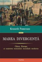 Marea divergenta: China, Europa si nasterea economiei mondiale moderne (ebook)