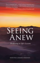 Seeing Anew (ebook)