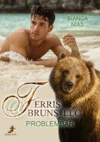 Ferris@Bruns_LLC (ebook)