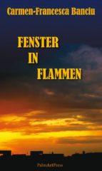 Fenster in Flammen (ebook)