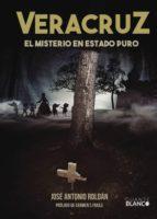Veracruz. El misterio en estado puro (ebook)