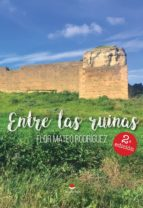 Entre las ruinas (ebook)
