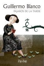 Pájaros de la tarde (ebook)