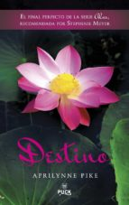 Destino (ebook)