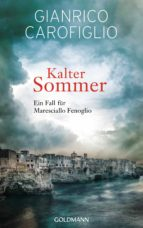 Kalter Sommer (ebook)