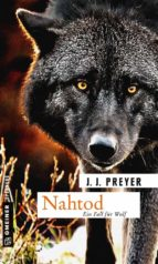 Nahtod (ebook)
