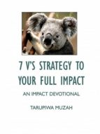 7 V?S STRATEGY TO YOUR FULL IMPACT