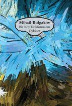 Bir Köy Doktorundan Öyküler (ebook)