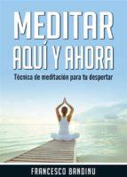Meditar Aquí Y Ahora. Técnica De Meditación Para Tu Despertar. (ebook)