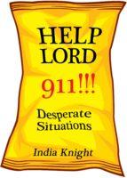 Help Lord 911!!! (ebook)