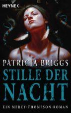 Stille der Nacht (ebook)