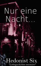 Nur Eine Nacht... (ebook)