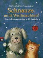 Schnauze, es ist Weihnachten (ebook)
