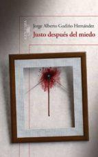 Justo después del miedo (ebook)