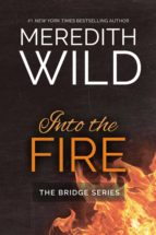 Into the Fire (ebook)